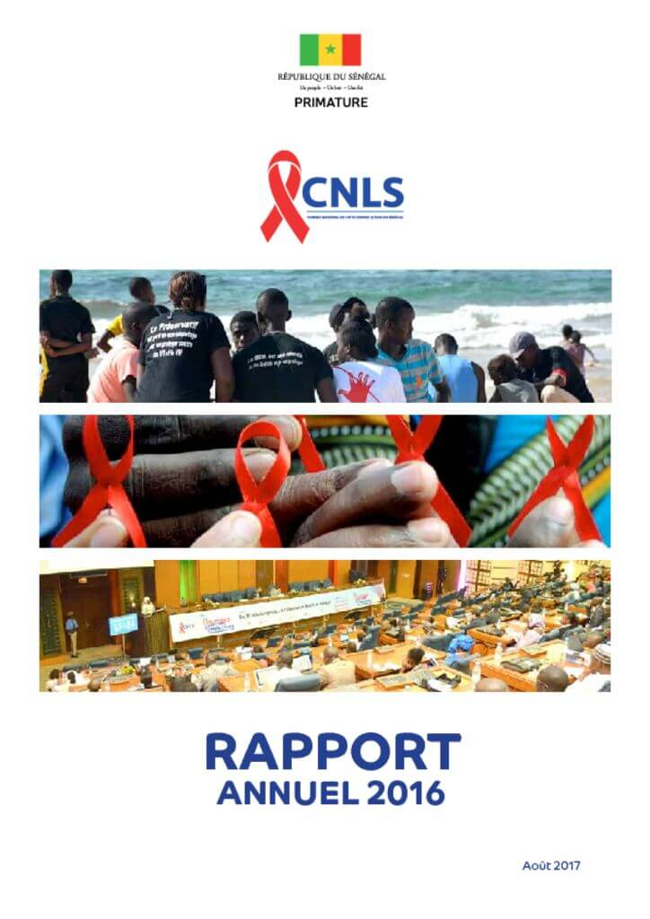 thumbnail of rapport annuel 2016
