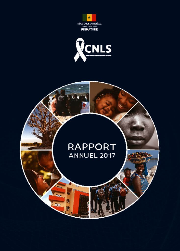thumbnail of cnlsrapport 2017