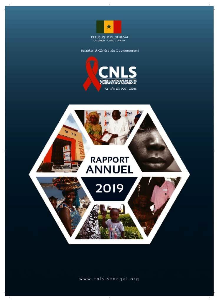 thumbnail of rapport annuel cnls 2019